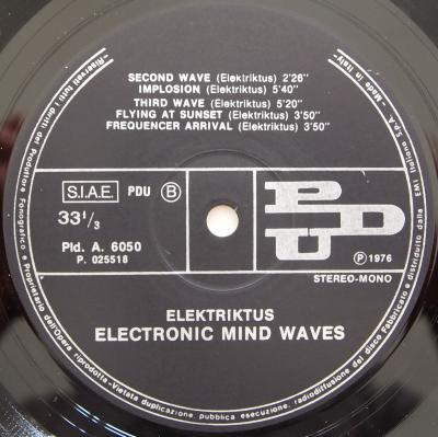 Electronic Mind Waves