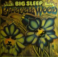 BIG SLEEP/Blue Bell Wood