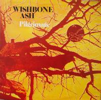 WISHBONE ASH/Pilgrimage