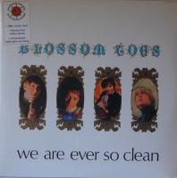 BLOSSOM TOES/We Are Ever So Clean