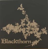 BLACKTHORN/Same