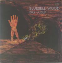 BIG SLEEP/Bluebell Wood